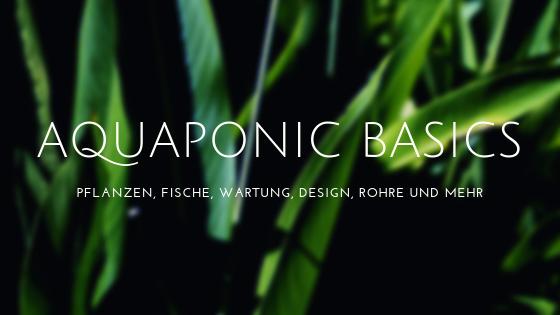 Thumbnail - Aquaponic Basics