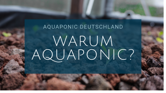 Warum Aquaponic?